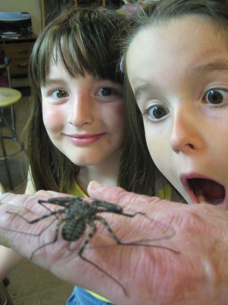 Children Looking at an Insect